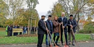 Ahmadiyya-Gemeinde-pflanzt-Baum-im-Maschpark_big_teaser_article